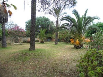 Image 5 | 3 bedroom house for sale, Llucmajor, Mallorca 124243