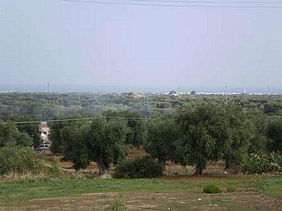 Image 10 | Farmhouse for sale with 13,000m2 of land, Ostuni, Brindisi, Puglia 130728