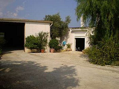Image 5 | Farmhouse for sale with 13,000m2 of land, Ostuni, Brindisi, Puglia 130728