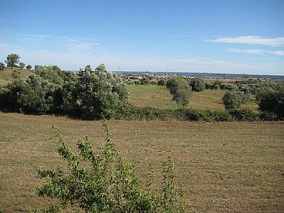 Image 9 | 4 bedroom farmhouse for sale with 0.5 hectares of land, Santarem, Santarem District, Central Portugal 132915