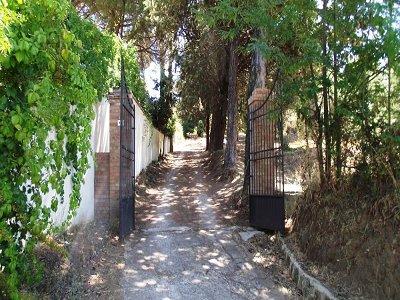 Image 6   Historica Villa 137317