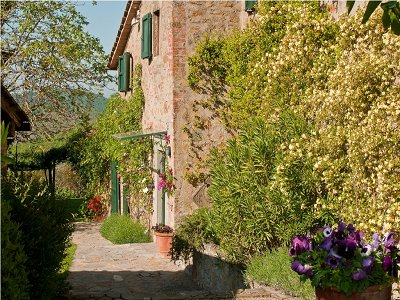Image 11 | 5 bedroom farmhouse for sale with 11 hectares of land, Chianti, Florence, Tuscany 138288