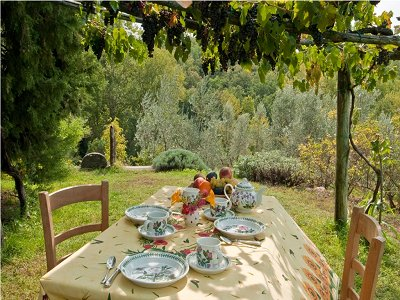 Image 12 | 5 bedroom farmhouse for sale with 11 hectares of land, Chianti, Florence, Tuscany 138288