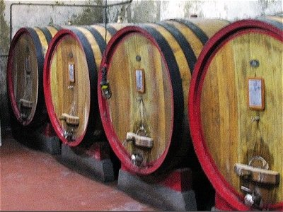 Image 11 | Historical Wine Estate & Manor House 138369