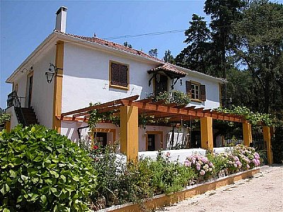 Quinta with 3 Gites and Equestrian Facilities