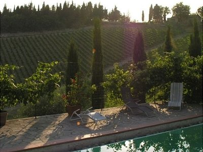 Image 10 | 10 bedroom farmhouse for sale with 50,000m2 of land, Gaiole in Chianti, Siena, Chianti 138466