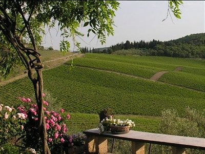 Image 6 | 10 bedroom farmhouse for sale with 50,000m2 of land, Gaiole in Chianti, Siena, Chianti 138466