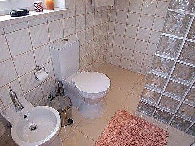 Image 13 | 3 bedroom villa for sale with 0.5 hectares of land, Santa Caterina, Caldas da Rainha, Leiria District, Costa de Prata Silver Coast 139555