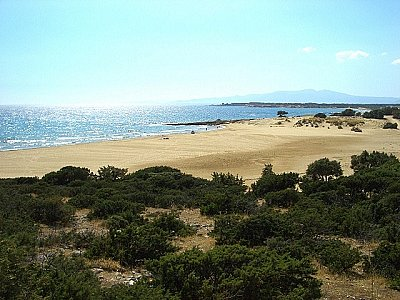 Image 8 | 4 bedroom villa for sale with 0.6 hectares of land, Cyclades, Naxos, Cyclades Islands 139932