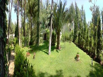 Image 10   1 bedroom villa for sale with 1,000m2 of land, Kassandra, Halkidiki, Central Macedonia 141999