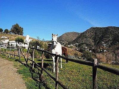 Image 10 | Exquisite Country Estate 143463