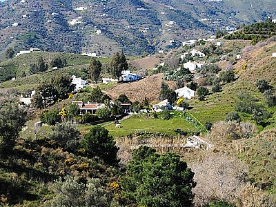 Image 4 | Exquisite Country Estate 143463