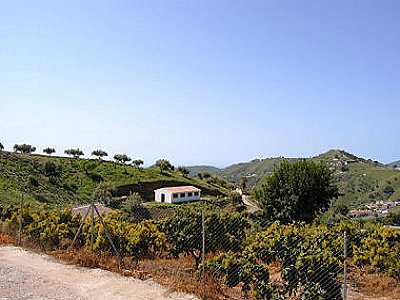 Image 3 | 4 bedroom farmhouse for sale with 0.38 hectares of land, Torrox, Malaga Costa del Sol, Andalucia 143543