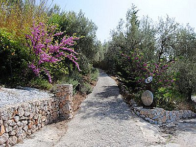 Image 4 | 4 bedroom farmhouse for sale with 0.38 hectares of land, Torrox, Malaga Costa del Sol, Andalucia 143543