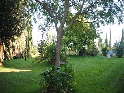 Image 2 | Farmhouse with vineyard in Livorno, Tuscany for sale 147263