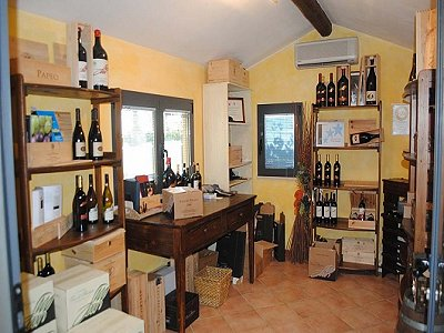 Image 4 | Farmhouse with vineyard in Livorno, Tuscany for sale 147263