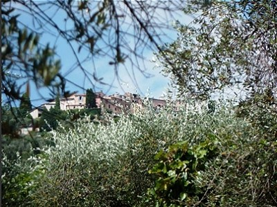 Image 17   14 bedroom villa for sale with 5,870m2 of land, Grasse, Provence 148175