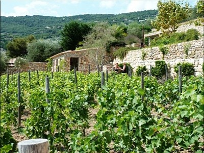 Image 3   14 bedroom villa for sale with 5,870m2 of land, Grasse, Provence 148175