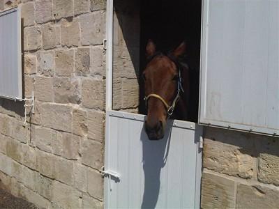 Image 10 | Farmhouse Property for Sale in Malta 148962