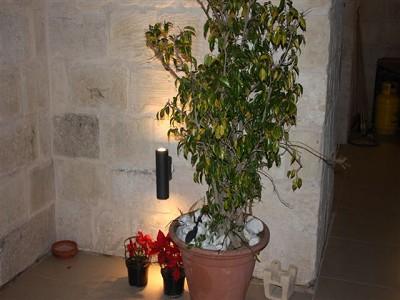 Image 6 | Farmhouse Property for Sale in Malta 148962