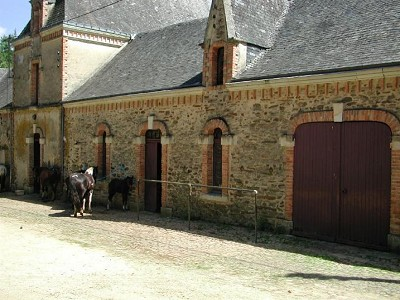Image 9 | 31 bedroom French chateau for sale with 11 hectares of land, Angers, Maine-et-Loire , Loire Valley 148965