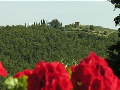 Image 5 | 5 bedroom farmhouse for sale with 1,000m2 of land, Castelnuovo Berardenga, Siena, Chianti 150865