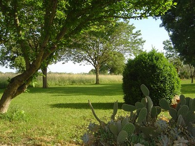 Image 8   7 bedroom farmhouse for sale with 1.5 hectares of land, Alpilles Campagne, Vaucluse , Provence 152786