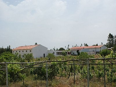 Picture of 1 bedroom Villa in Alcoentre, Northern and Central Portugal for sale  with 70000m2 of land - Reference 152982