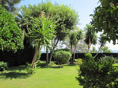 Image 8 | 4 bedroom villa for sale with 1,150m2 of land, Cap d'Ail, Eze Cap d'Ail, French Riviera 153683