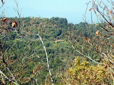 Image 5 | House for sale with 7 hectares of land, Paciano, Perugia, Umbria 154589