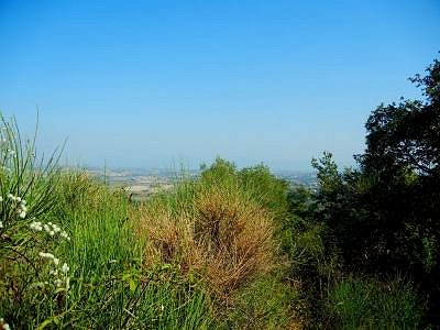 Image 6 | House for sale with 7 hectares of land, Paciano, Perugia, Umbria 154589