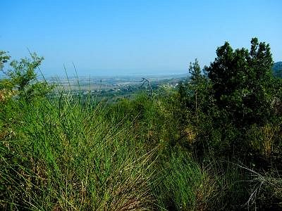 Image 8 | House for sale with 7 hectares of land, Paciano, Perugia, Umbria 154589