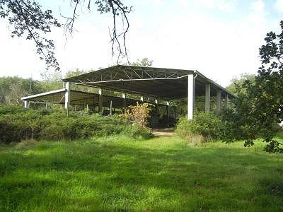 Image 11 | 10 bedroom farmhouse for sale with 33 hectares of land, Castiglione del Lago, Perugia, Umbria 156403