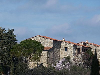 Image 2 | 7 bedroom villa for sale with 14 hectares of land, Suvereto, Livorno, Tuscany 156445