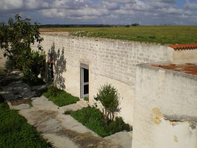 Image 10 | 2 bedroom villa for sale with 0.3 hectares of land, Mazzara del Vallo, Trapani, Sicily 156567
