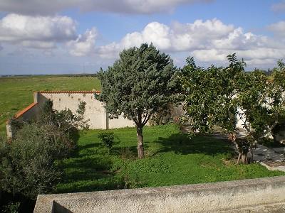 Image 8 | 2 bedroom villa for sale with 0.3 hectares of land, Mazzara del Vallo, Trapani, Sicily 156567