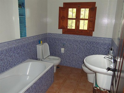 Image 16 | 4 bedroom farmhouse for sale with 0.88 hectares of land, Cartama, Malaga Costa del Sol, Andalucia 159209