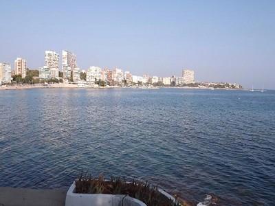 Image 4 | 5 bedroom villa for sale with 2,000m2 of land, Alicante, Alicante Costa Blanca, Valencia 160164