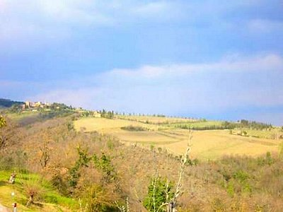 Image 9 | 20 bedroom farmhouse for sale with 400,000m2 of land, Gaiole in Chianti, Siena, Chianti 160848