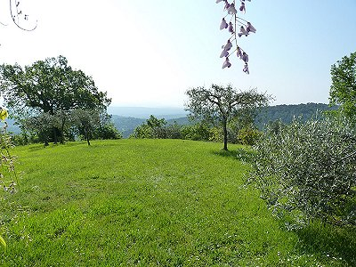 Image 5 | 3 bedroom house for sale with 0.49 hectares of land, Seillans, Var , Cote d'Azur French Riviera 161282