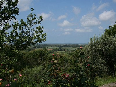 Image 6 | 3 bedroom farmhouse for sale with 14.2 hectares of land, Castagneto Carducci, Livorno, Tuscany 161870