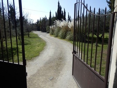 Image 25   4 bedroom farmhouse for sale with 0.71 hectares of land, Alpilles, Vaucluse , Provence 164581