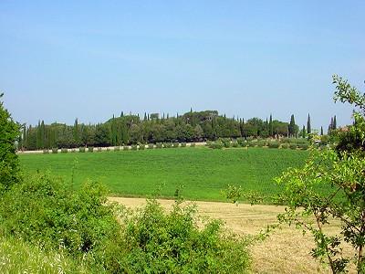 Historical Villa