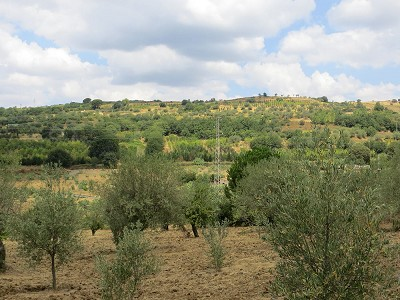 Image 11 | 3 bedroom villa for sale with 3.5 hectares of land, Enna, Sicily 165069
