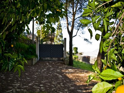 Image 13 | 5 bedroom villa for sale with 5 hectares of land, Caltagirone, Catania, Sicily 167708