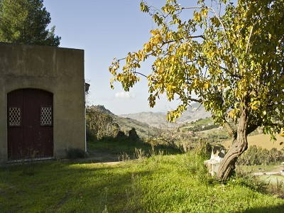 Image 8 | 5 bedroom villa for sale with 5 hectares of land, Caltagirone, Catania, Sicily 167708