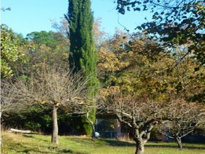Image 4 | 4 bedroom farmhouse for sale with 1.5 hectares of land, Aix en Provence, Bouches-du-Rhone , Provence 168208