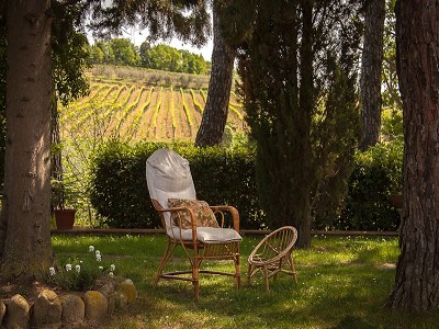 Image 16 | 7 bedroom farmhouse for sale with 3.5 hectares of land, Montespertoli, Florence, Chianti 168323