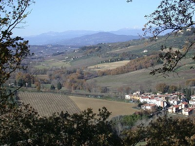 Image 20 | 7 bedroom farmhouse for sale with 3.5 hectares of land, Montespertoli, Florence, Chianti 168323