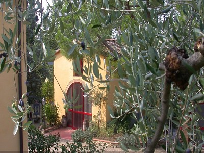 Image 3 | 7 bedroom farmhouse for sale with 3.5 hectares of land, Montespertoli, Florence, Chianti 168323